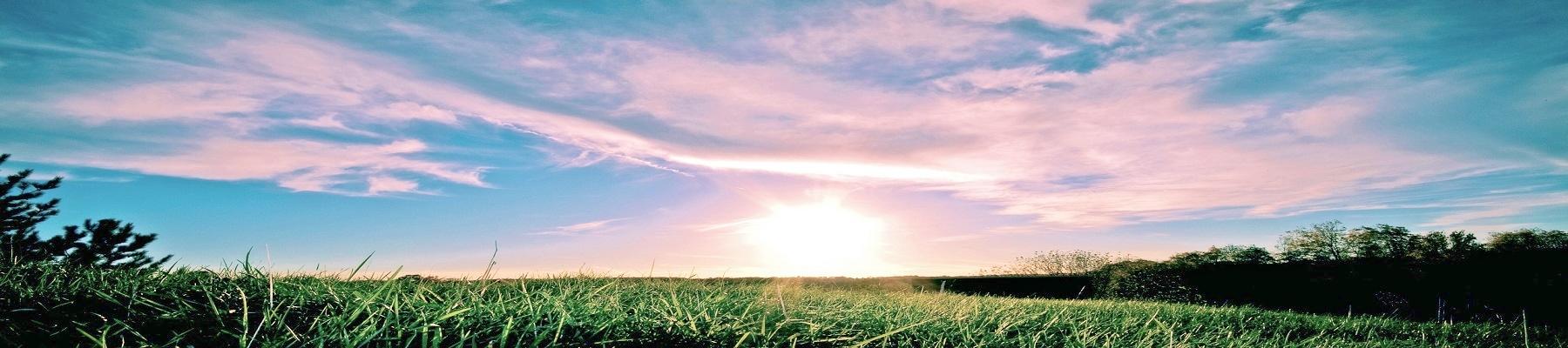 lowbird-landscape-daylight
