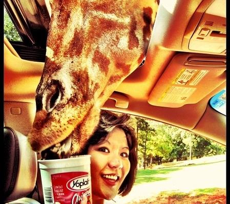 Phoebe with Giraffe