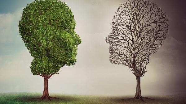 PhoebeMD health blog bipolar disorder